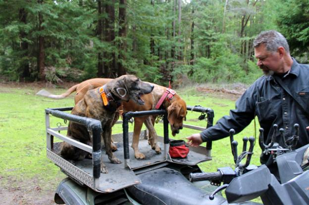 Troy Collinsworth hydrates his dogs after an outing. Brendan Bane photo.
