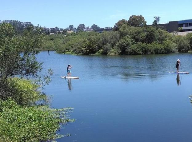 Antonelli Pond, on the Westside of Santa Cruz, was the Land Trust's first conservation project. It's now enjoyed as a dog-walking, fishing and even SUP destination. Photo courtesy Land Trust.
