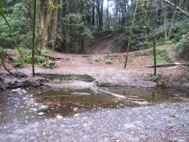 One upside of the drought: Aptos Creek was easily crossed on Feb. 2. Hilltromper photo.