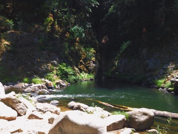 The swimming hole curves around a bend in a gorge in Henry Cowell Redwoods State Park means it's deep enough to jump in here. Photo by Molly Lautamo.