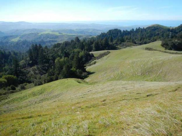 The view west from La Honda Creek Open Space Preserve.