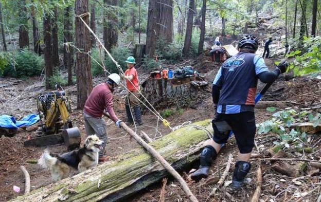 MBoSC on the job in the Soquel Demo Forest. Bruce Dorman photo.
