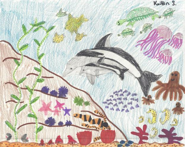 "Honorable mention: ""Marine Life"" by Kaitlin Schmauch, grade 5, Mar Vista Elementary in Aptos"
