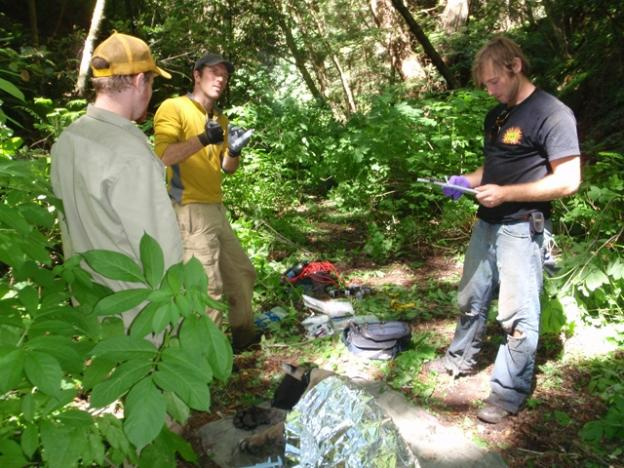 Biologists Paul Houghtaling (center) and Chris Fust (right) prepare to assess a sedated puma, muzzled and covered in mylar at bottom. Photo courtesy Troy Collinsworth.