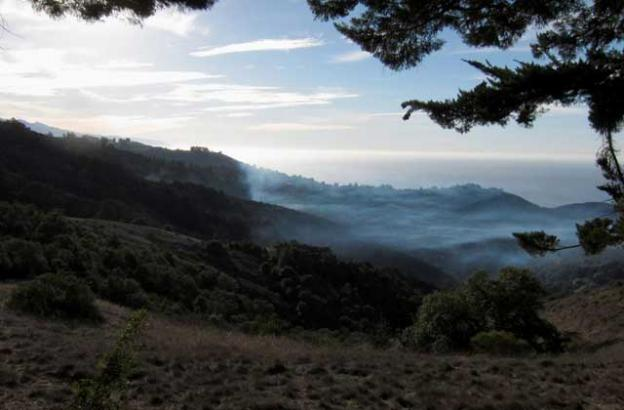 Dec. 31: Pfeiffer Fire's not out yet. Two flareups southeast of us on lower Pfeiffer Ridge this morning, < 1 mile away.