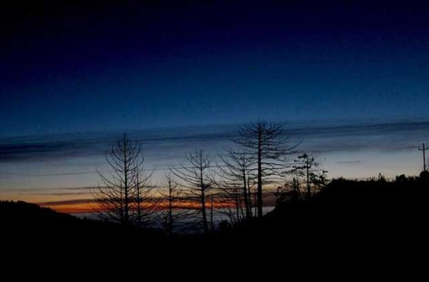 Dec. 26: Tonight's sunset behind tree skeletons on Pfeiffer Ridge, looking towards Pfeiffer Beach. There must have been 50 cars stopped at Pt Sur with dozens of people all taking pictures.
