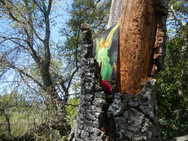 A psychedelic angel is nailed to the holy oak.