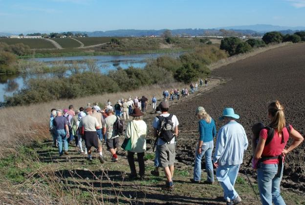 Land Trust members on a tour of Watsonville Slough Farm. Portions of the 440-acre property, purchased by the Land Trust in 2009, will eventually be open to the public. Photo courtesy Land Trust.