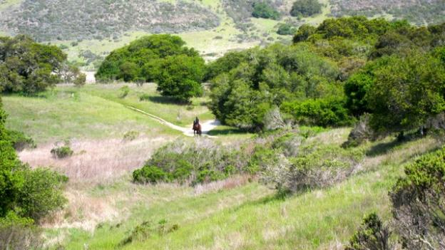 Wilder Ranch has 34 miles of hiking, biking and equestrian trails on 7,000 acres.
