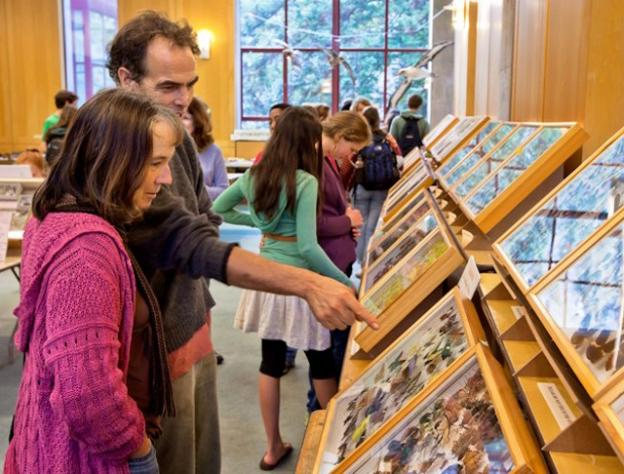 Museum, classroom, library of flora and fauna—the Norris Center fills many roles.
