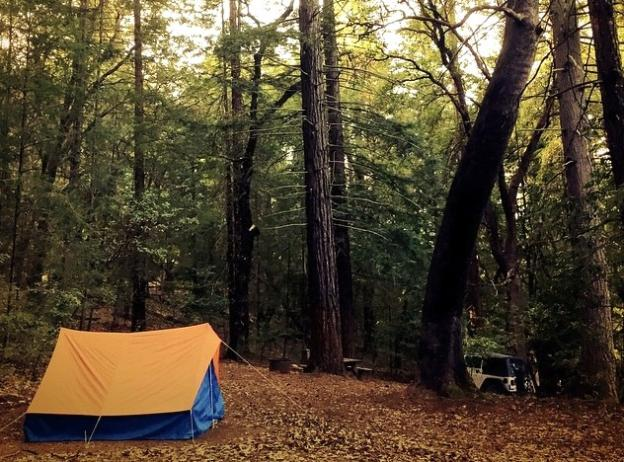 Want to sleep under a redwood? The Great Park has almost 500 c&sites designed for & Camping in The Great Park | Santa Cruz
