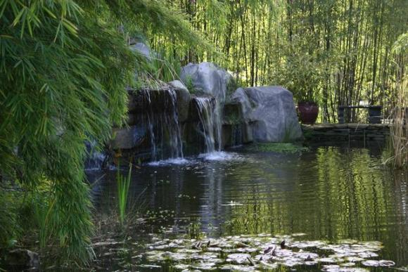 Waterfalls and a pond await at Bamboo Giant, 38 acres of landscaped bamboo nursery on Freedom Boulevard. Bamboo Giant photo.