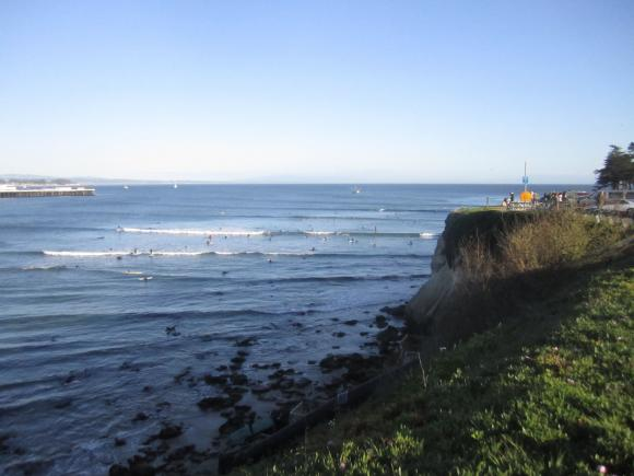 A mob of longboarders on a sunny day at Cowells surf break. Photo credit: Hilltromper