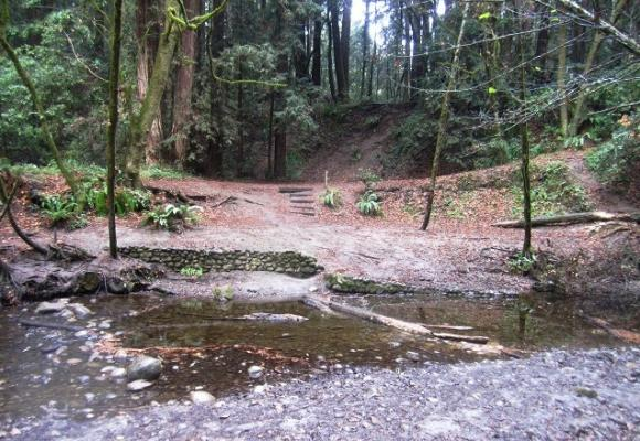 Seasonal bridges come down for the winter in Nisene Marks, but Aptos Creek is often passble anyway. Hilltromper photo.