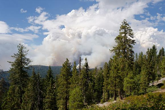 Rim Fire in Yosemite, viewed from Tioga Road, August 2013. Photo by King of Hearts via Wikimedia Commons.