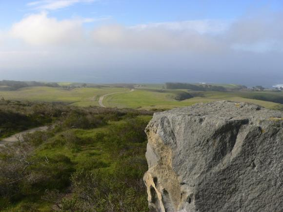 View from the proposed Cotoni-Coast Dairies National Monument. Photo by Ian Bornarth.