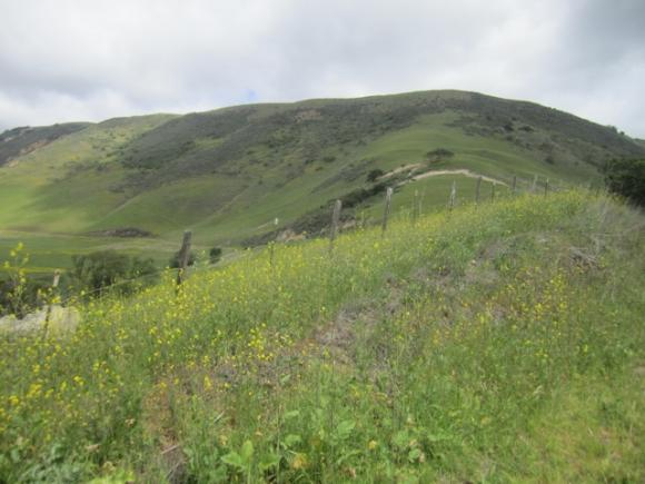 Open space districts can protect ag lands as well as establish parks. Hilltromper photo.