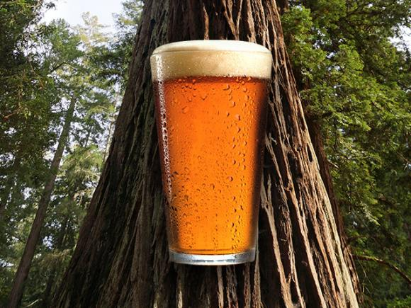Santa Cruz Mountain Brewing is donating $1 from each pint sold on Thursday, Aug. 15 to Friends of Santa Cruz State Parks.