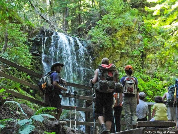 Big Basin State Park | Santa Cruz