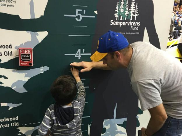 Dads enjoy helping their kids measure up against a redwood tree. Photo courtesy Sempervirens Fund.