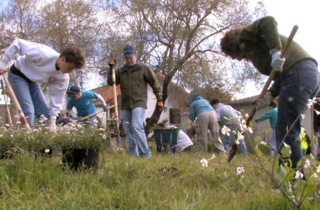 Friends volunteers are a big reason Santa Cruz's state parks are thriving.