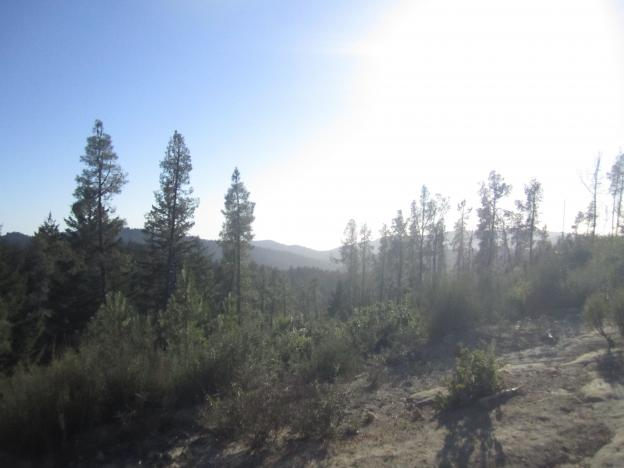 Looking west from Ocean View Summit in Big Basin State Park. Photo by Hilltromper.
