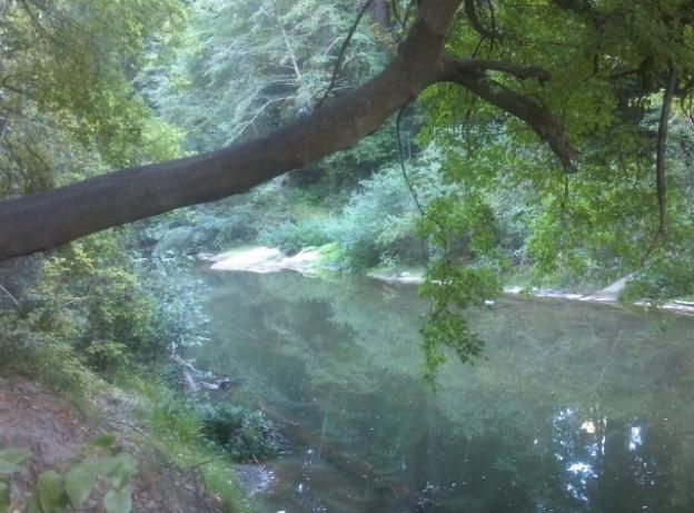 The San Lorenzo River viewed from the River Trail just before the train trestle. Hilltromper photo.