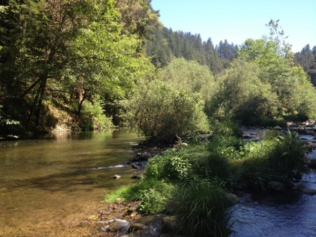 Shallower areas nearby are good for wading or exploring. Photo by Molly Lautamo.