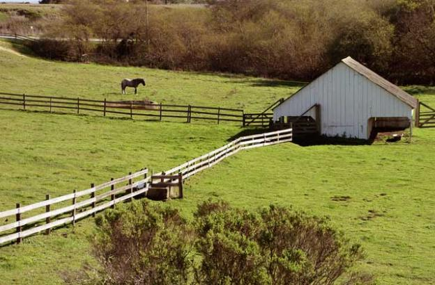Wilder Ranch State Park, once a working dairy operation, is home to a visitors center and a Friends ParkStore. Dusty Nelson photo.