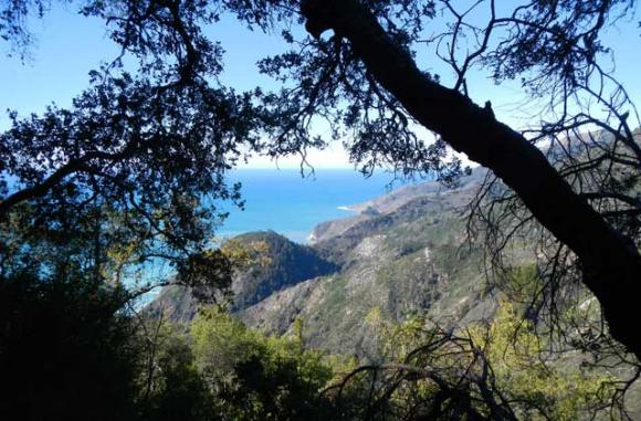 Like all climbs from the ocean side of Big Sur, the payoffs are immediate and breathtaking.