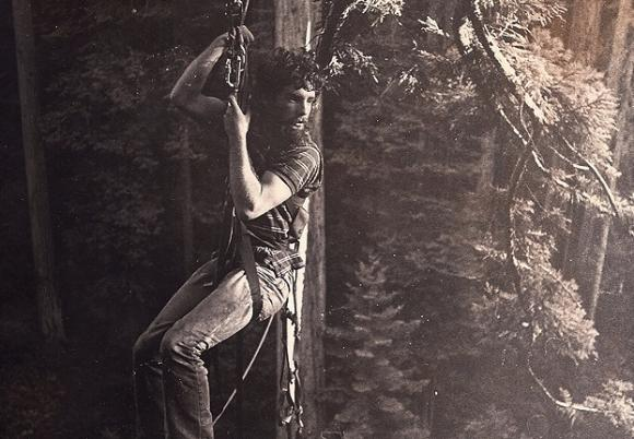 """In 1987, Greg King spent a week in a tree in the All Species Grove, one of the ancient redwood groves within Headwaters Forest. King said, """"Those spiky branches almost killed me when I careened toward them on the traverse at 20 mph, only the ascent at the other side of the ride slowing and therefore saving me."""" Photo courtesy Greg King."""
