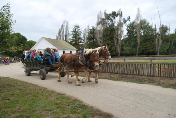 Wagon rides? Alrighty, then! Photo by Peg Danielson.