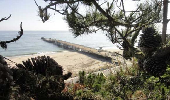 Seacliff State Beach's concrete ship, the Palo Alto. Photo by Garrett McAuliffe.