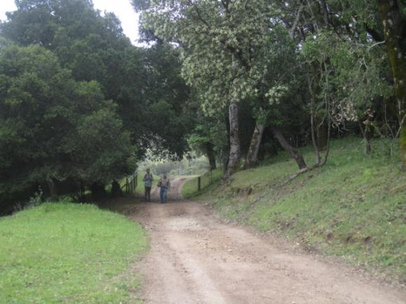 Hikers enjoy the scenery on a Star Creek Ranch Adventure day. Hilltromper photo.