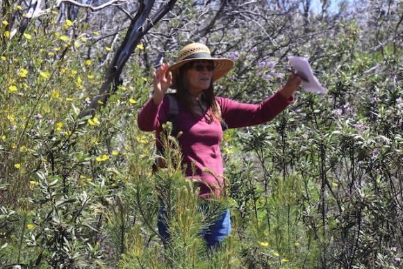 Botanist Valerie Hailey leads a walk through Bonny Doon Ecological Preserve on May 7.