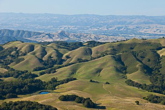 Overhead view of Star Creek Ranch by Land Trust of Santa Cruz County. Photo credit: William K Matthias.