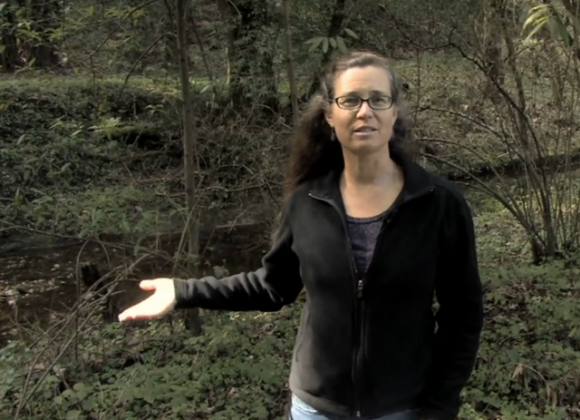 Kristen Kittleston, a fishery resource planner for the county, explaining why the 50-foot buffer zone around waterways is a good thing (even if it does cramp your grand plans for a place literally ON the river).